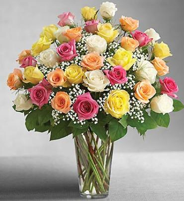 Ultimate Elegant Premium Long Stem Assorted Roses