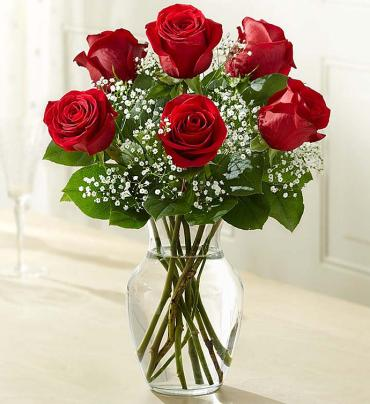 Love\'s Embrace Red Roses