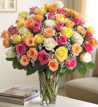 Ultimate Elegant Long Stem Assorted Roses