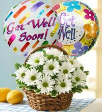 Basket of Daisies with Get Well Balloon